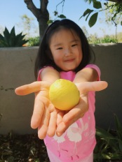 So excited that she picked a lemon from the tree in the backyard